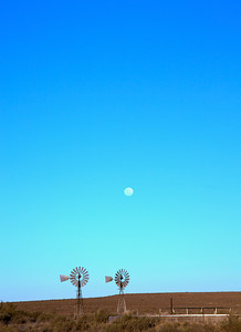 Moon rising before sunset, near Loxton, South Africa