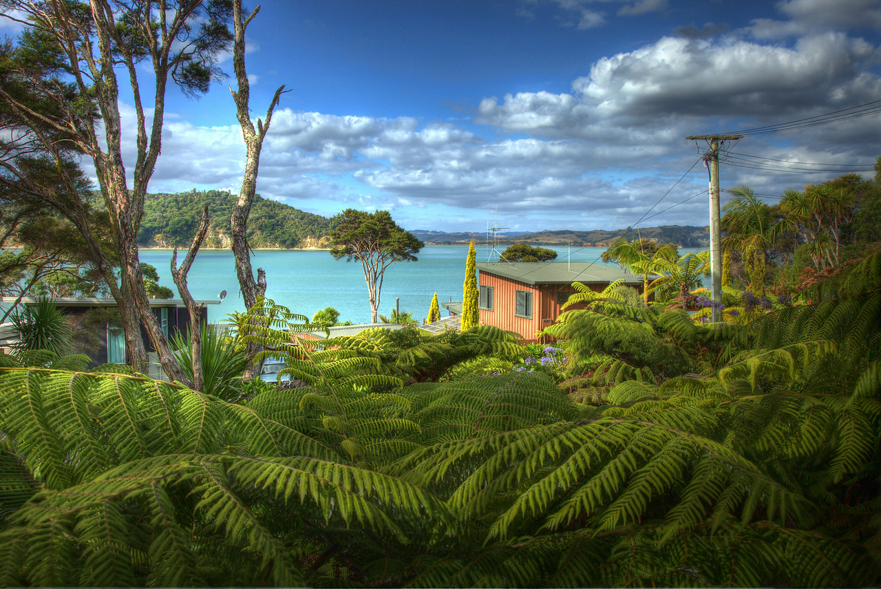 The view north from my western deck - February 2013<br /> Raglan, New Zealand